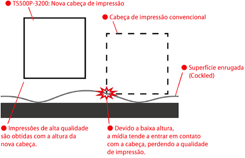 Fig.2: Altura da cabeça