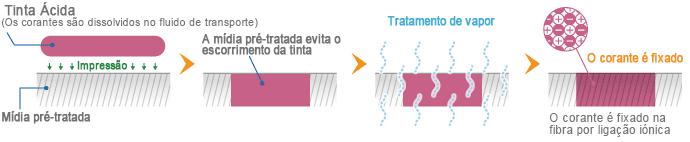Mecanismo de fixação da Tinta Ácida