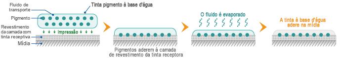 Mecanismo de adesão da tinta pigmento